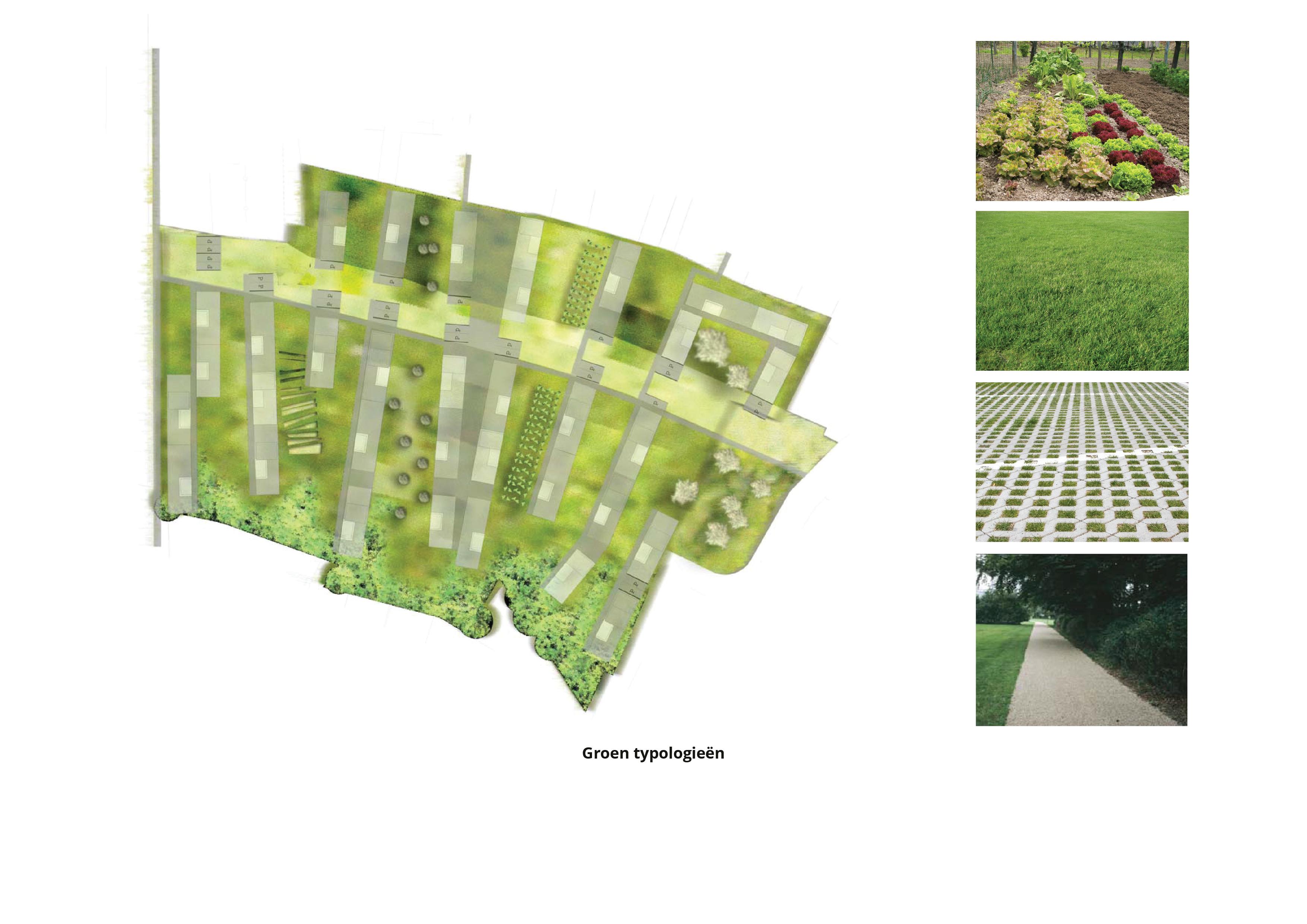Hofleven – Groenstructuur